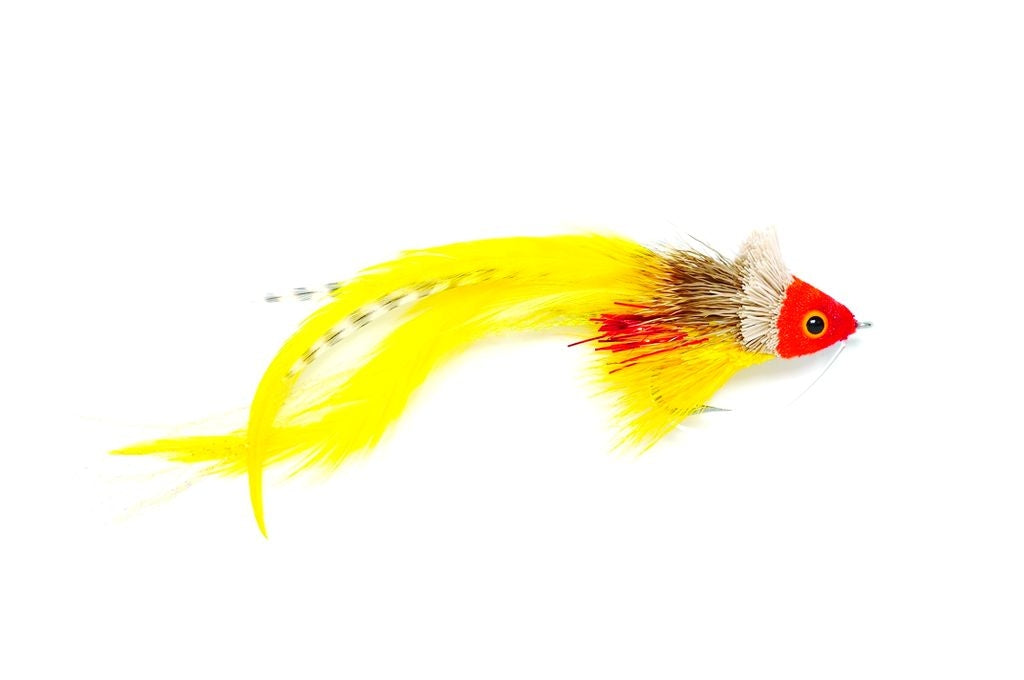 Fulling Mill Swimming Red Yellow Fly