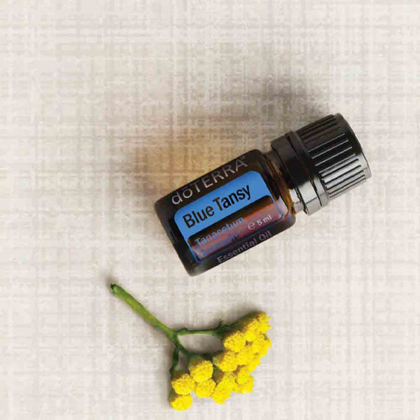 doterra blue tansy oil