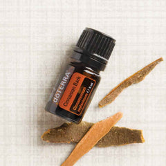 doterra cinnamon bark oil