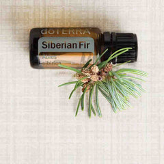 doterra siberian fir oil