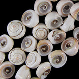 16mm natural pink shell snail beads 16