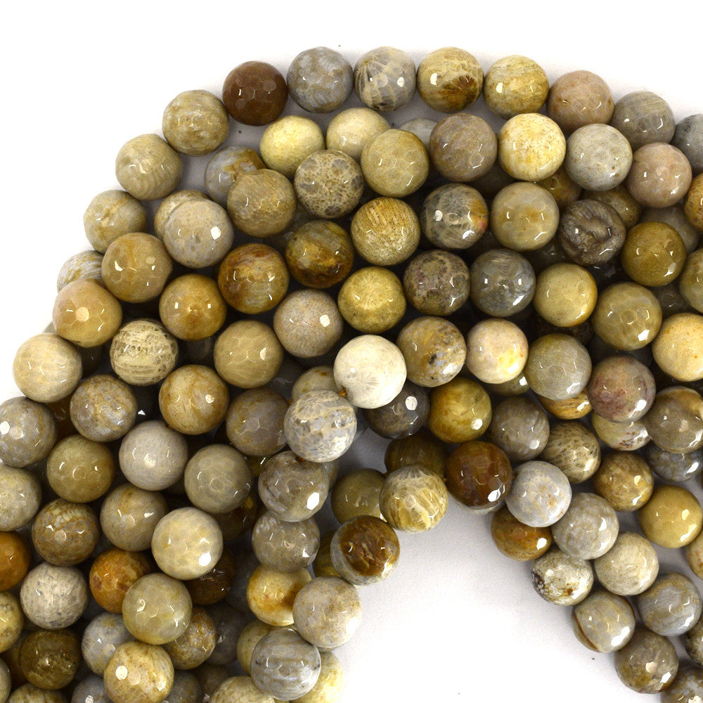 "10mm faceted fossil coral round beads 15"" strand"