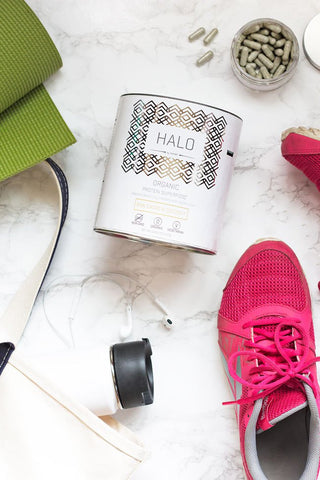 HALO | Organic Whey & Plant Protein Powder Blend