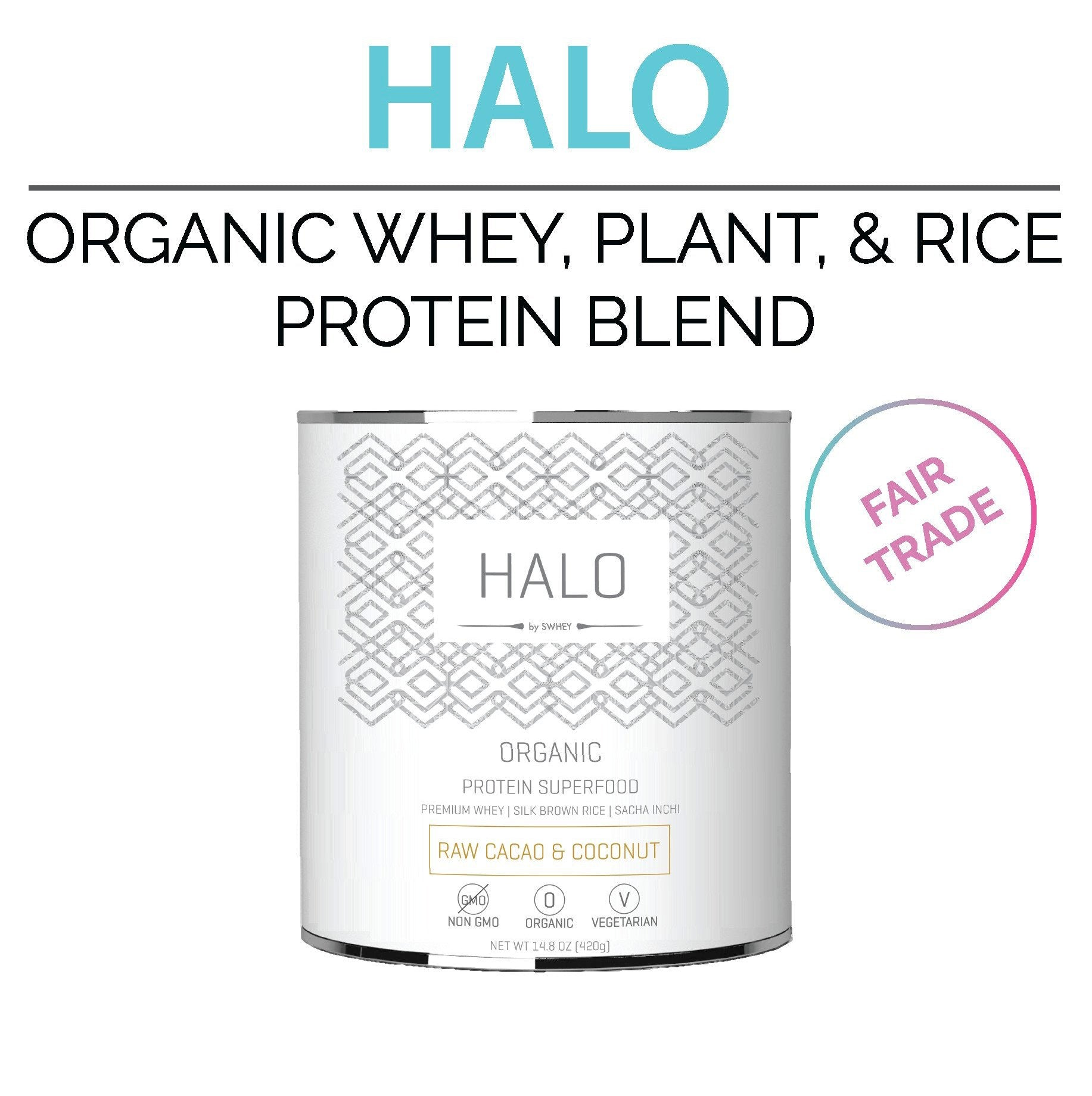Chocolate Protein Powder for Women Whey Plant Based Protein Blend