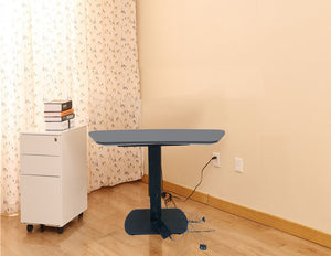 Adjustable Height Electric Table (ET-S)  - 8