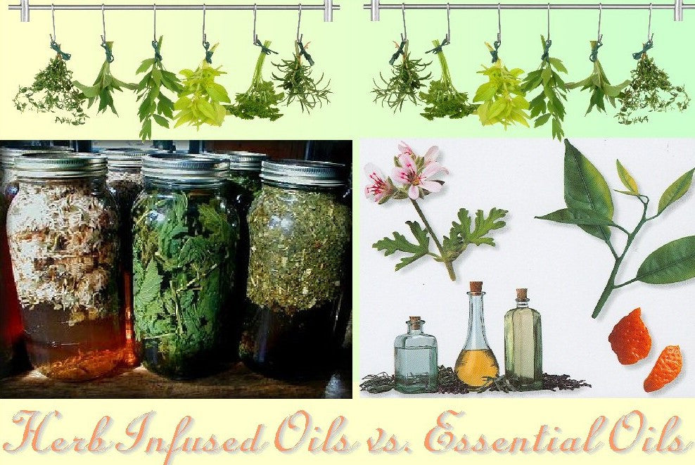 WHAT IS THE DIFFERENCE BETWEEN ESSENTIAL OILS AND HERB INFUSED OILS?