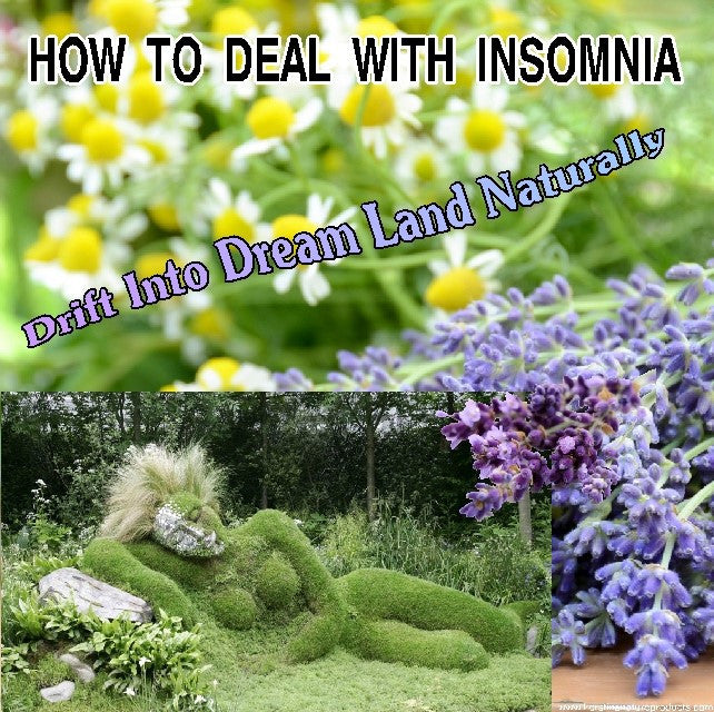 HOW TO DEAL WITH INSOMNIA - DRIFT INTO DREAM LAND NATURALLY