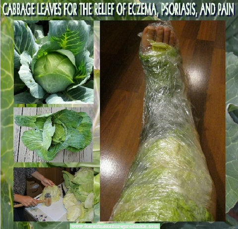 cabbage wrap for sin problems and pain - kerstins nature products