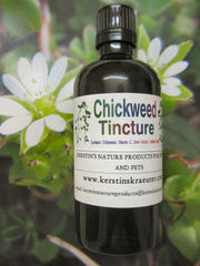 Chickweed Tincture - Kerstin's Nature Products