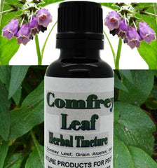 comfrey tincture - kerstin's nature products