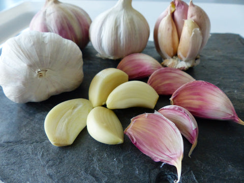 garlic - Kerstin's Nature Products