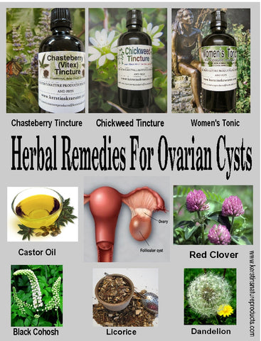 Best Herbal Remedies for Ovarian Cysts