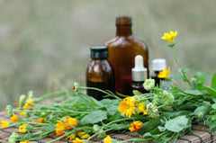 herbal oils - kerstins nature products