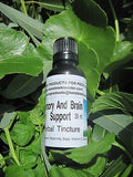 Memory And Brain Support Herbal Tincture ~ Multiple Sizes - Kerstin's Nature Products