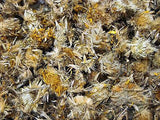 Arnica Flowers, Whole - Dried Herb ~Multiple Sizes - Kerstin's Nature Products
