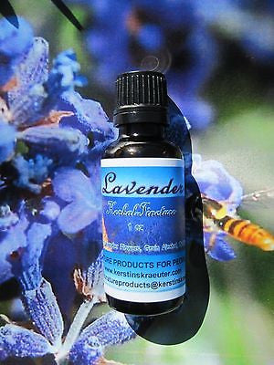 Lavender Flower Herbal Tincture Extract, Multiple Sizes - Kerstin's Nature Products