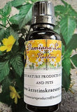 Damiana Leaf Tincture Extract ~Multiple Sizes - Kerstin's Nature Products