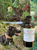 Natural Flea, Tick and Mosquito Control Remedy for Dogs - Kerstin's Nature Products