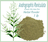 Andrographis Paniculata (Chuan Xin Lian Fen) Powder - Kerstin's Nature Products
