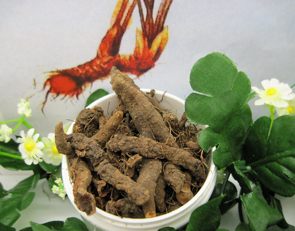 Bloodroot Root Dried Herb Cut - Kerstin's Nature Products