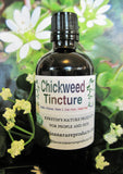 Chickweed Herbal Tincture - Kerstin's Nature Products