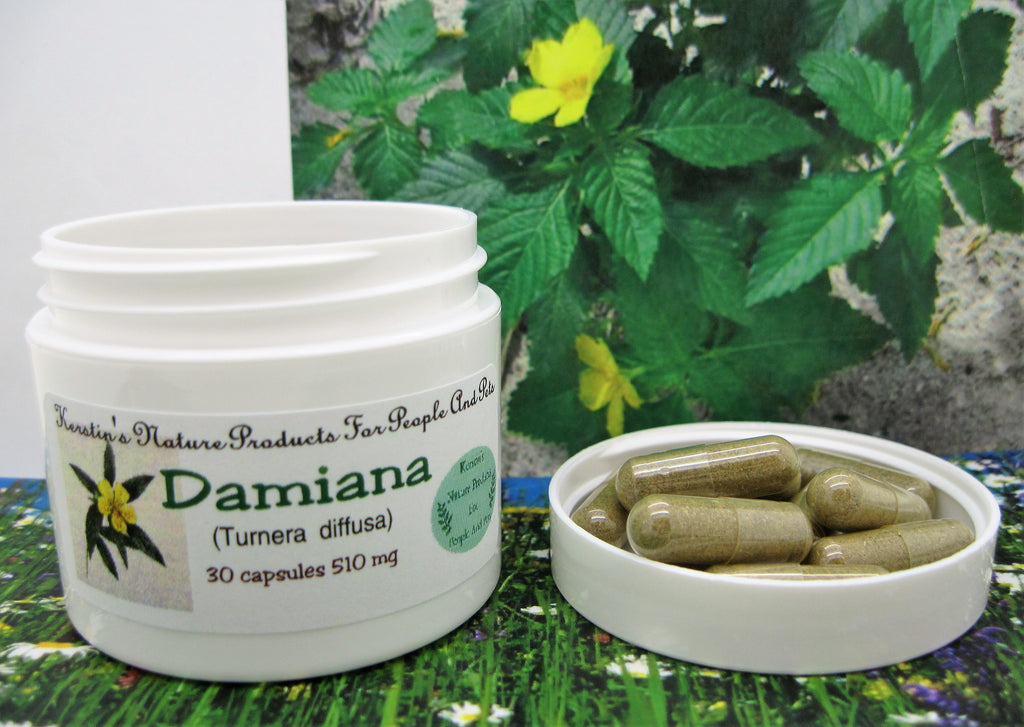 Damiana (Turnera diffusa) 510 mg 30 Capsules - Kerstin's Nature Products