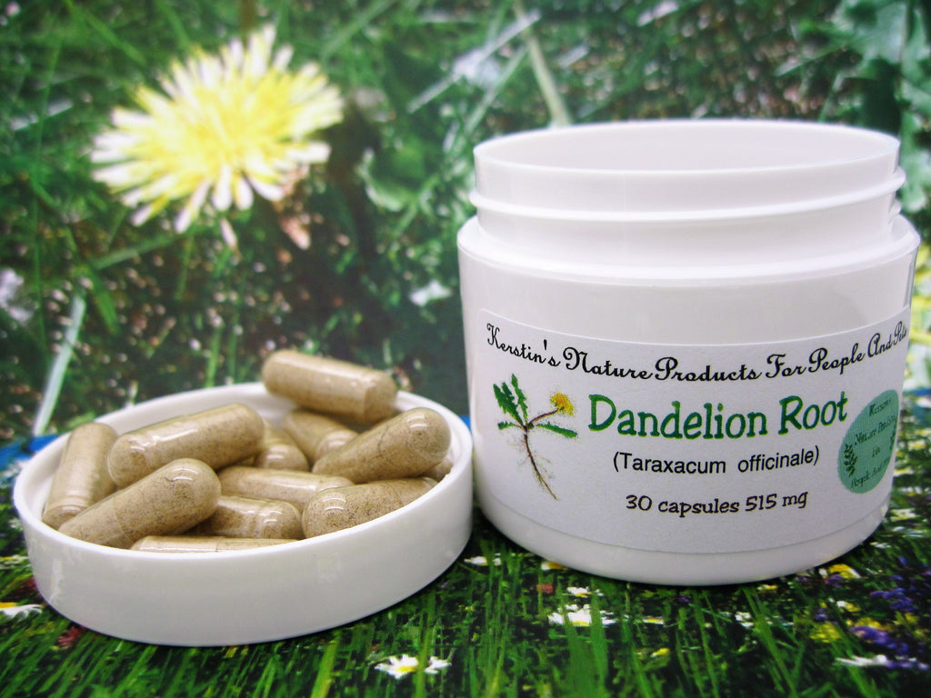 Dandelion Root (Taraxacum officinale) 515 mg 30 Capsules - Kerstin's Nature Products