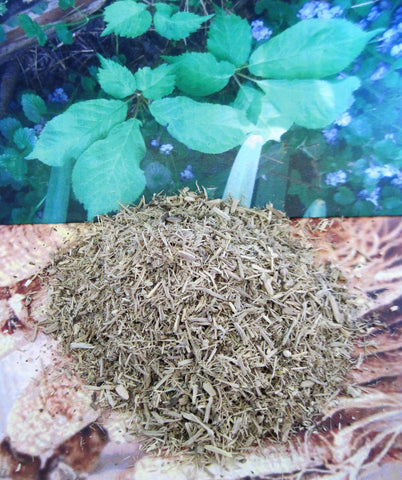 Eleuthero Root - Siberian Ginseng (Eleutherococcus senticosus), Dried Herb - Kerstin's Nature Products
