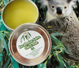 Eucalyptus Salve Chest Rub  ~Multiple Sizes - Kerstin's Nature Products
