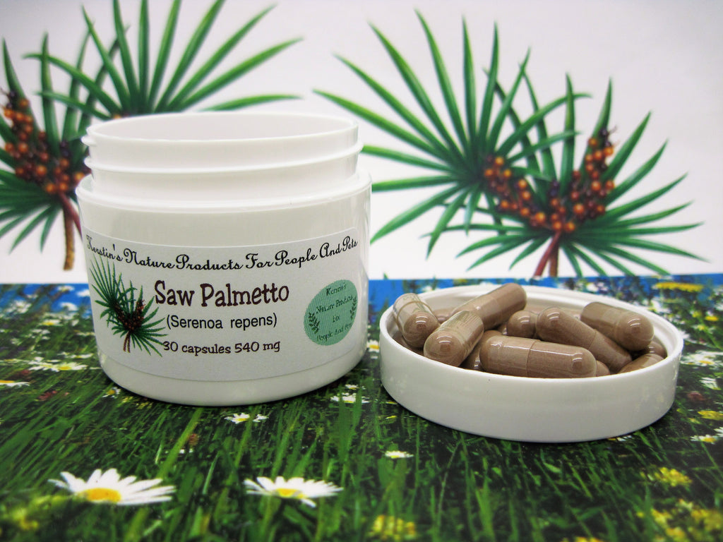 Saw Palmetto (Serenoa repens) 540 mg 30 Capsules - Kerstin's Nature Products