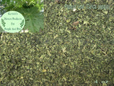 Papaya Leaf - Dried Herb Cut ~Multiple Sizes - Kerstin's Nature Products