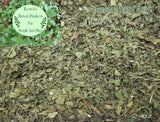 Peppermint - Dried Herb Cut ~Multiple Sizes