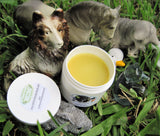 Animal Friendly All Purpose Healing Salve For Pets 4 oz - Kerstin's Nature Products
