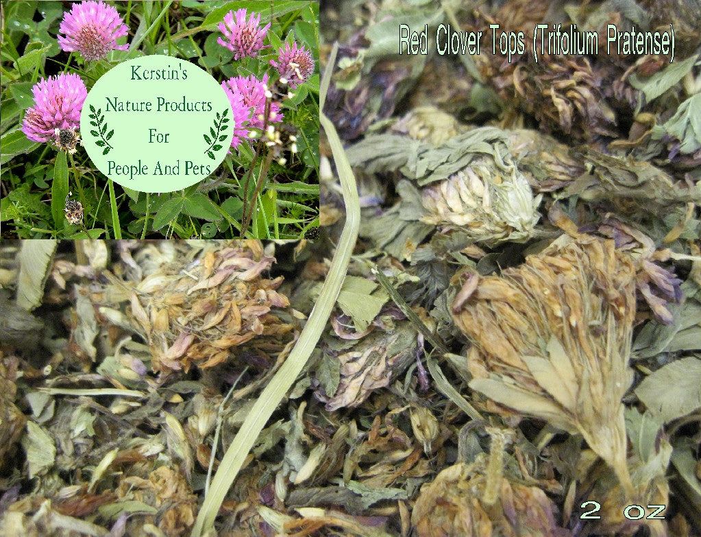 Red Clover Tops Whole Dried Herb - Kerstin's Nature Products