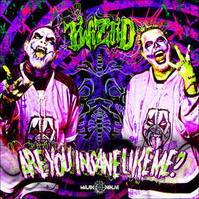 "Are You Insane Like Me-Twiztid, 7"" (RECORD STORE DAY)"
