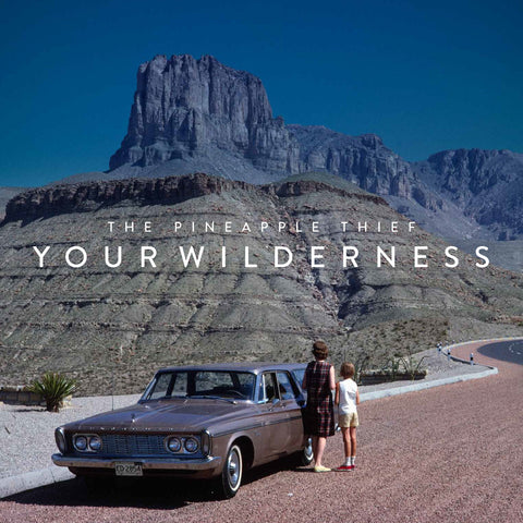 Your Wilderness - Pineapple Thief, CD