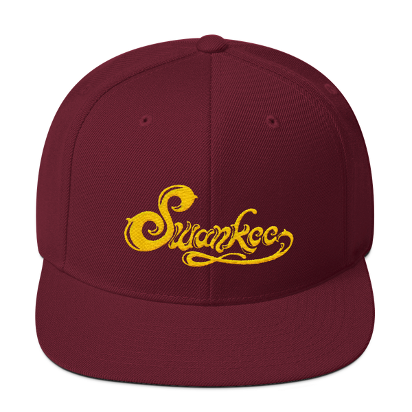 Solid Color Snapback