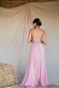 Pink Line embellished Tube Gown
