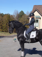 Friesian Sparkle Pad