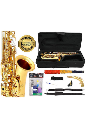 D'Luca 350 Series Gold Brass Eb Alto Saxophone with F# key, Professional Case, Cleaning Kit and 1 Year Manufacturer Warranty