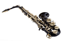 Hawk Colored Student Black Alto Saxophone with Case, Mouthpiece and Reed