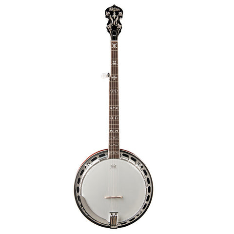 Washburn Five String Banjo