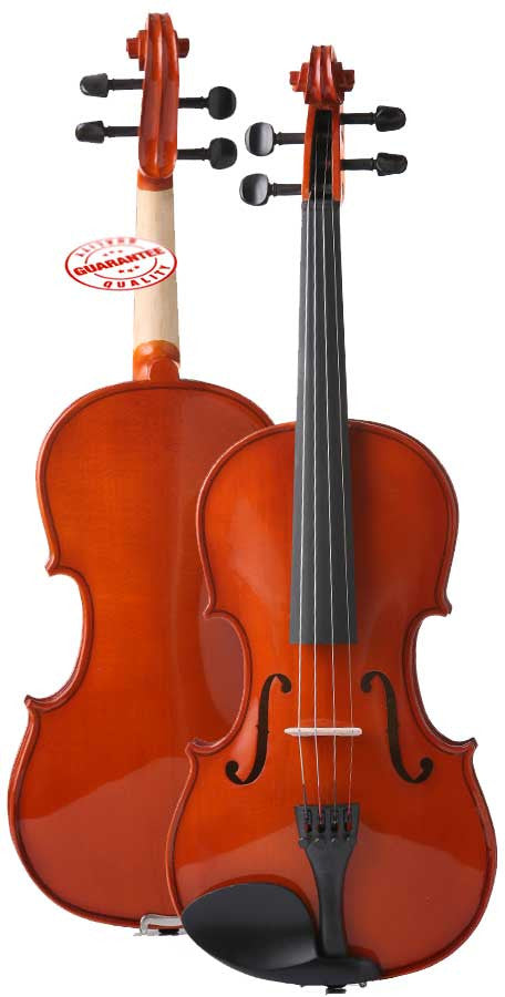 D'Luca Meister Student Violin Outfit 1/10