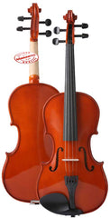 D'Luca Meister Student Violin Outfit 1/2