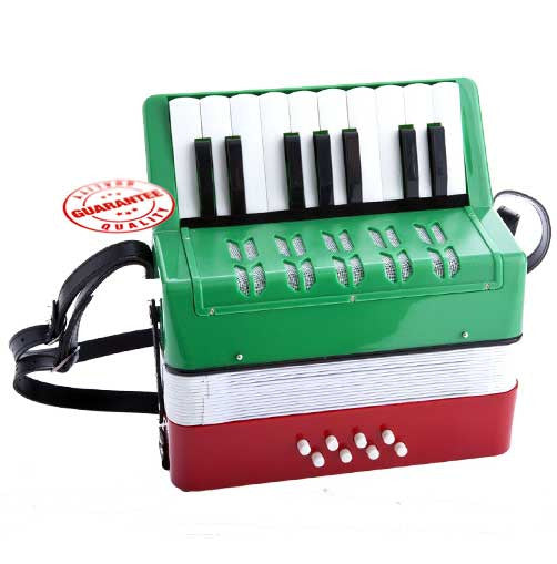 D'Luca Kids Piano Accordion 17 Keys 8 Bass RWG