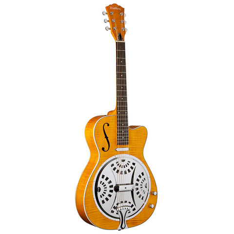Washburn Resonator