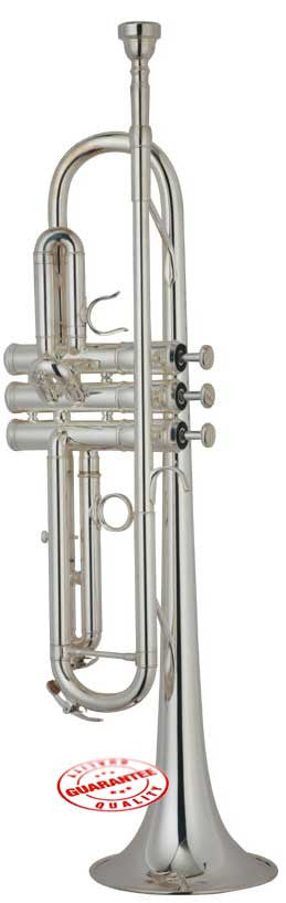 Hawk Silver Plated Bb Trumpet with Case and Mouthpiece