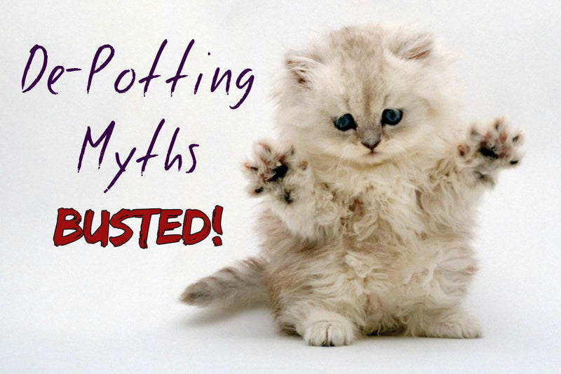 De-Potting Myths — Busted!