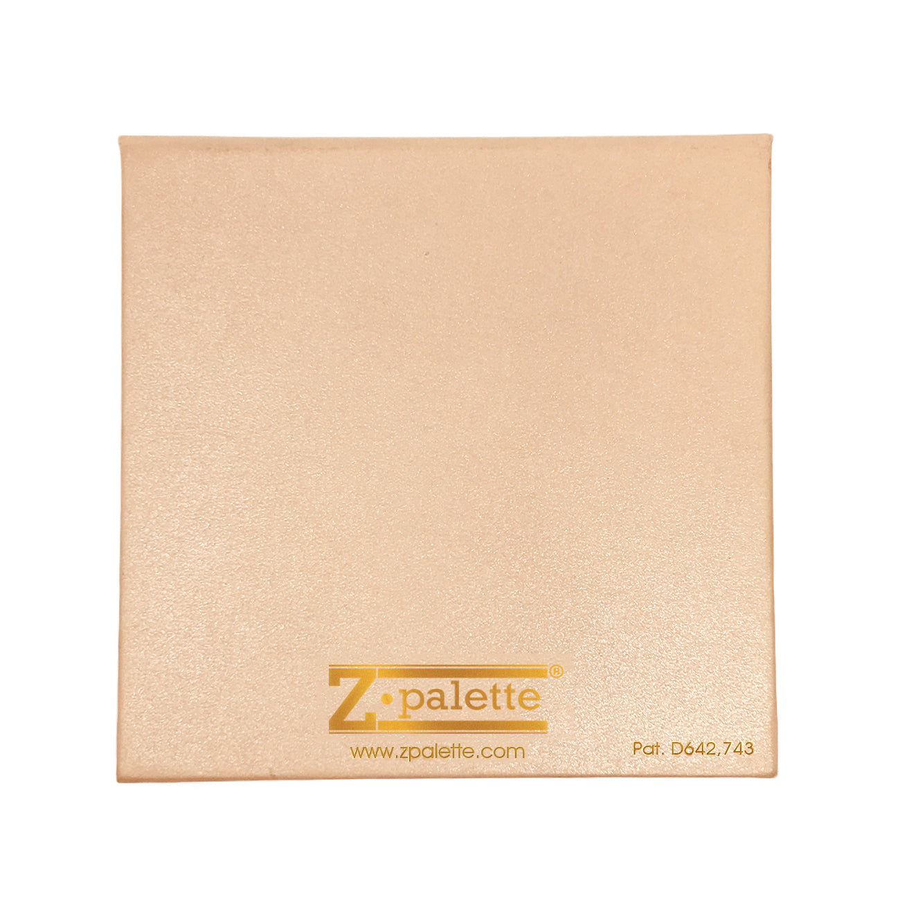 SMALL BALLET SLIPPER Z PALETTE