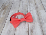 (18-258) Geranium Bow Tie and/or Suspenders - Mr. Bow Tie